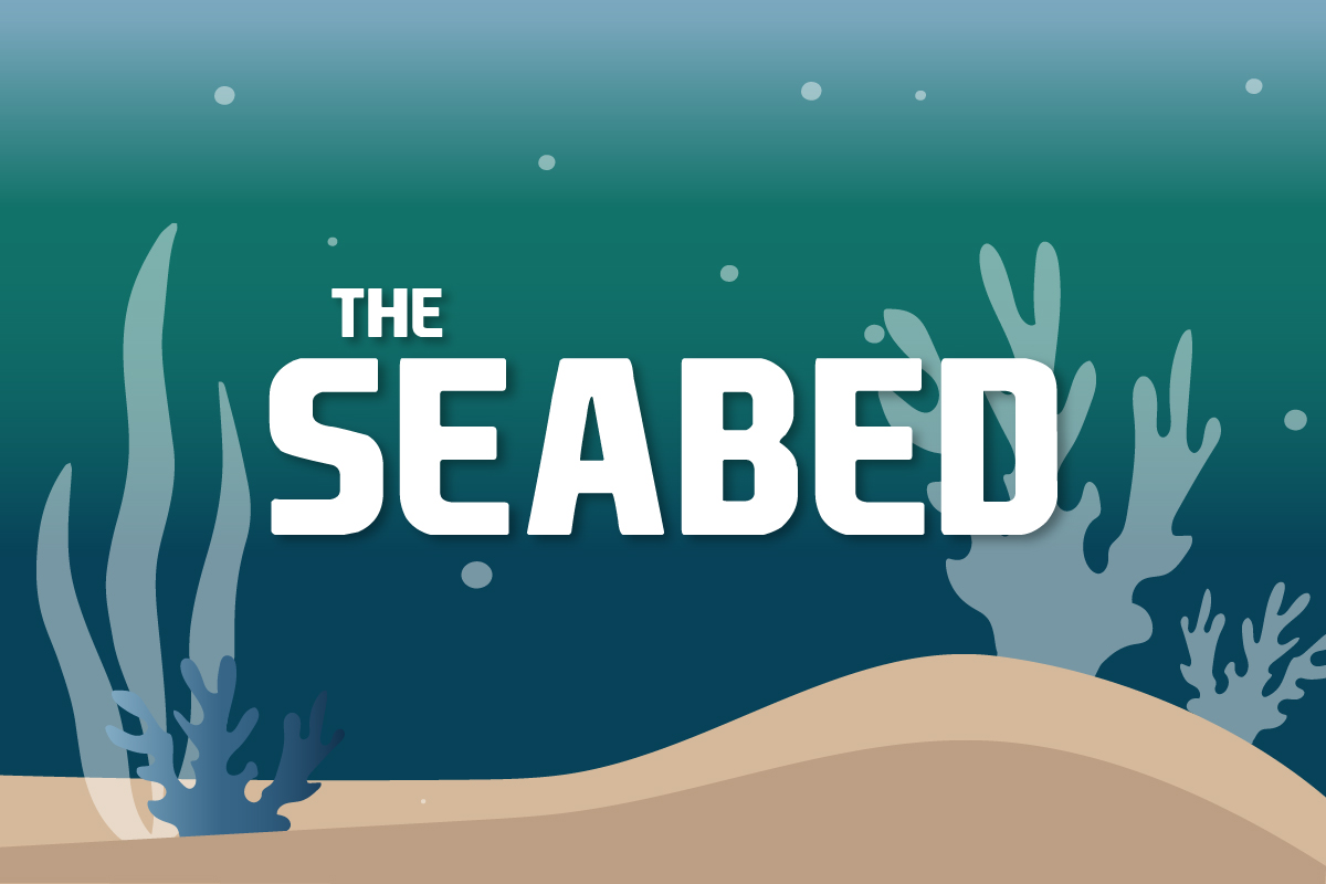 The seabed