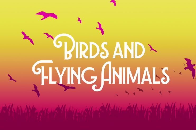 Birds and Flying Animals