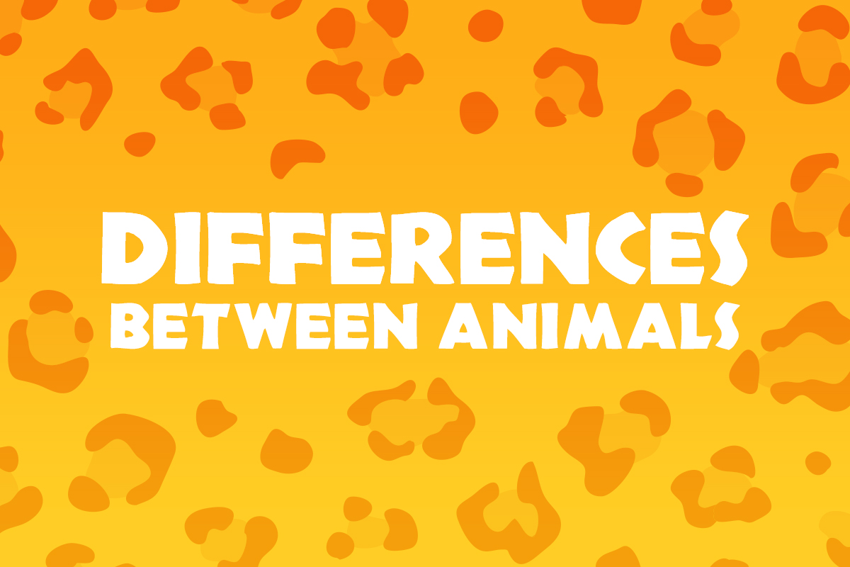 Differences Between Animals